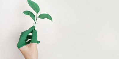 green thumb, sustainable, environment, leaf, green